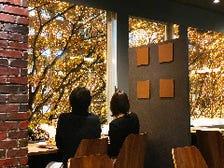 けやき並木が美しい窓際の席