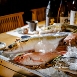 市場から仕入れる鮮魚を、刺身だけでなく塩焼きや煮付けでも