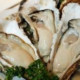 生牡蠣や焼き牡蠣、厳選した牡蠣をご用意