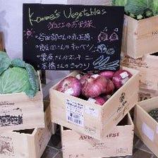 契約農家直送のたくさんの野菜達