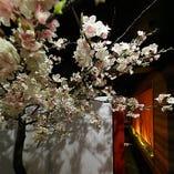 入口入ってすぐの桜のオブジェが印象的な和の空間です。