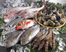 お好きに鮮魚を選んでちょこちょこと