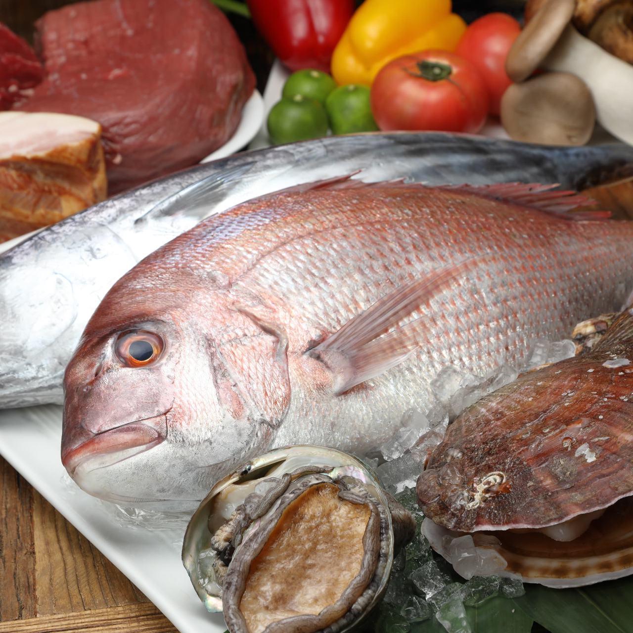 地元で水揚げされた魚介など旬の食材を活かした逸品がずらり!
