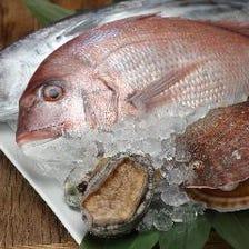 地物の魚介や季節野菜をふんだんに