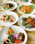本格中国料理