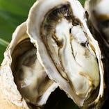 新鮮な牡蠣!季節によっては、炙り、焼き、蒸しなど色々な食べ方を楽しめます。