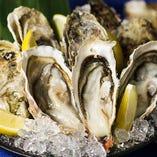 新鮮な北海道産牡蠣【北海道厚岸】
