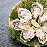 サブスク!!【牡蠣】1500円/月で、毎回ディナー来店時に牡蠣料理が無料!!!
