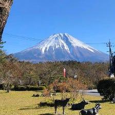 雄大な富士を眺めながらの食事