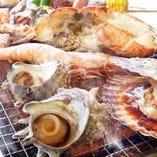 豊洲市場から仕入れる魚介【豊洲市場】