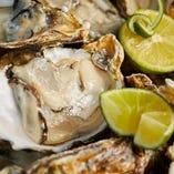 宮城県産の殻付き牡蠣