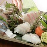 新鮮な魚を石川県能登半島より 毎日直送