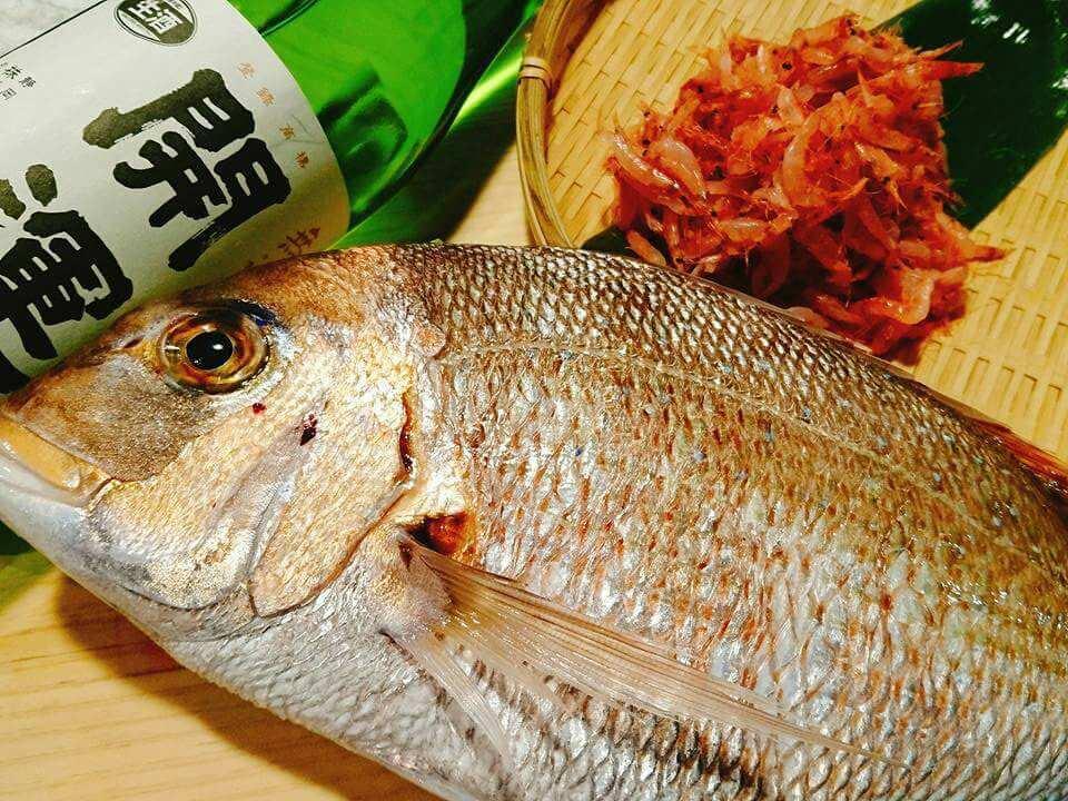 天然魚など絶品鮮魚料理をご堪能