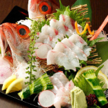 日本海の最高級魚『喉黒』