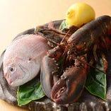 活オマール海老 or 活アワビを鉄板焼きで。調理直前まで生簀で泳いでいた新鮮な素材です