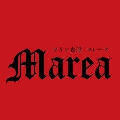 ワイン食堂 MAREA(マレーア)