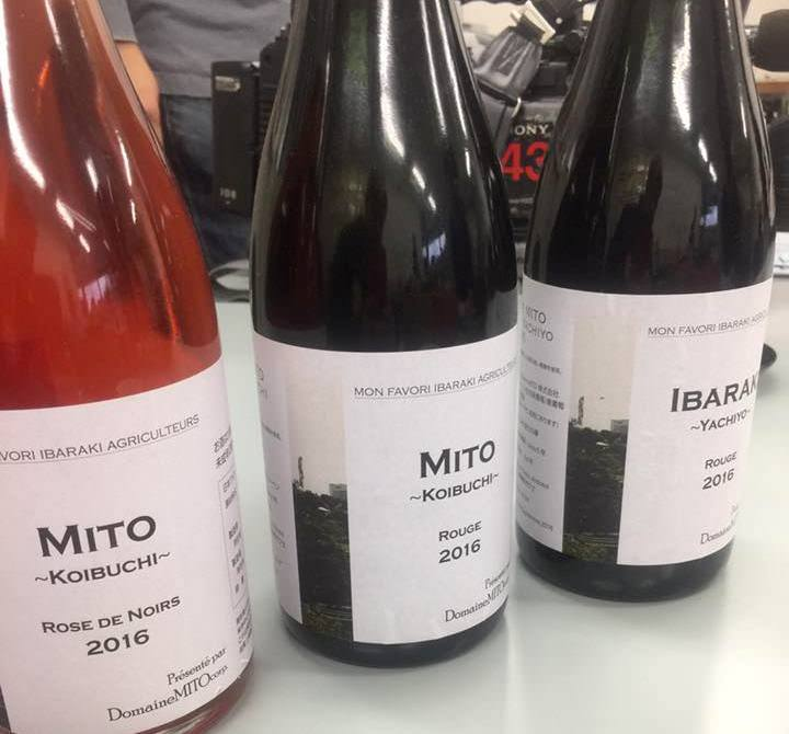 水戸で日本ワインを醸造してます!