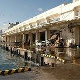 みうら沿岸漁港!ここから毎日、直接お店に新鮮な魚が入ります!