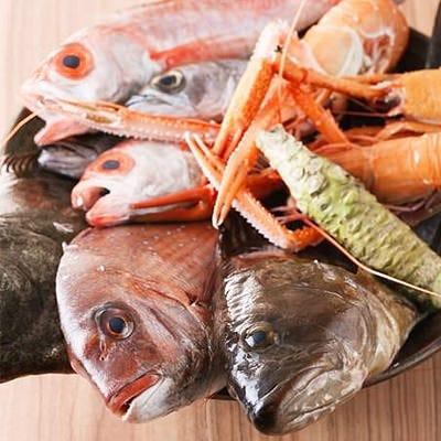 紀伊長島直送の鮮魚
