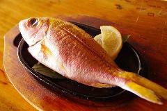 近海魚バター焼き