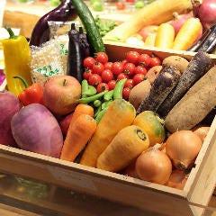 こだわり産直野菜と生パスタ ARK Dining 肥後橋