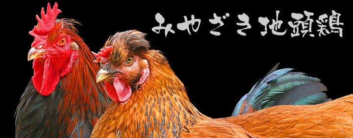 鳥鳥 古市店