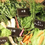 100%無農薬BiO野菜【相模原】