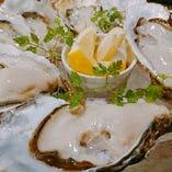 牡蠣【厚岸】