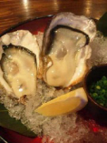 かきんちゅ来たら。生牡蠣食べてって☆