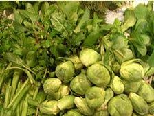 契約農場より直送の新鮮な野菜