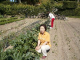 エッコのためだけにおいしい野菜を作ってくれる川島さんです
