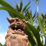 宮古島の雰囲気をお楽しみください