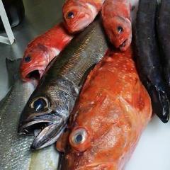 季節の旬菜イタリアン NAVIGANTE 横浜元町