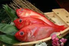 湘南三浦の地魚もご用意してお待ちしてます!
