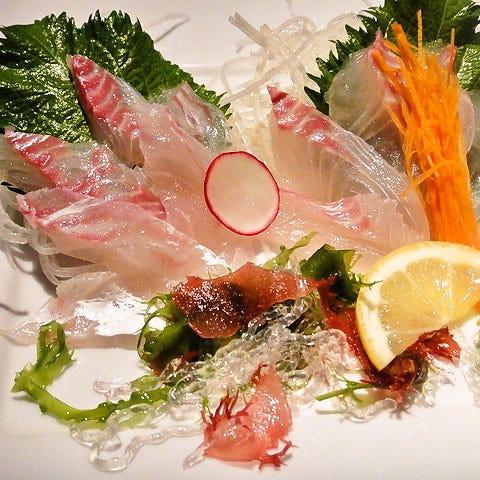 自分で釣った魚をピクピク刺身で食す
