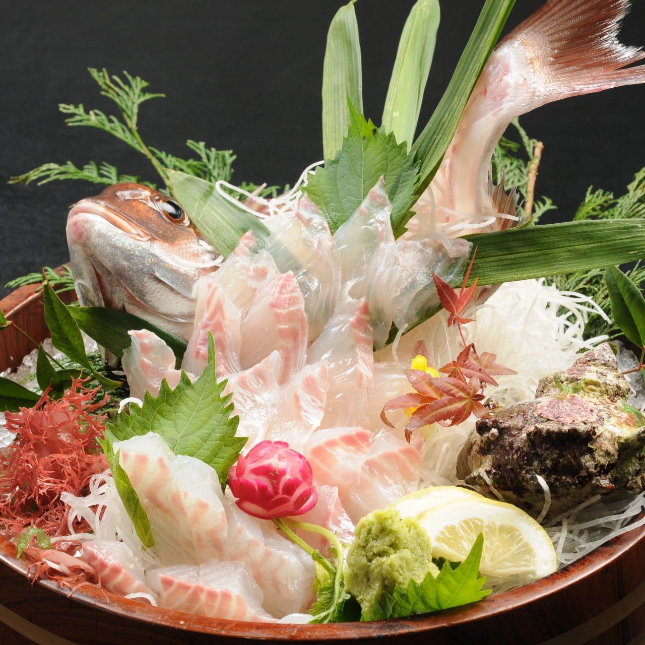 高級魚真鯛も釣ると安い!活刺で