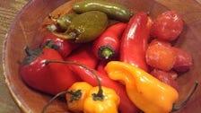 バラエティ豊かなメキシコ唐辛子