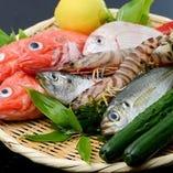 豊洲市場から仕入れる新鮮な魚介【東京都】