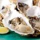 レモンをきゅっと絞って一口で!三陸の海が育てた絶品生牡蠣。