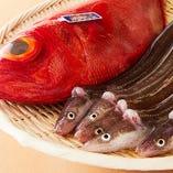 豊洲より仕入れたこだわりの天然魚。