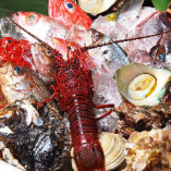 今美味しい食材をお届け!! レギュラーメニューの他、春夏秋冬の季節料理をご用意しています♪魚介系なら春は浅利、夏は鰻、秋は秋刀魚、冬は白子等、仕入れ時に食べ頃を迎えている食材を吟味しお客様にお届けしています!メニュー表やグルメサイトには記載のない期間限定メニューとなりますので、気軽にお尋ねください。