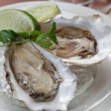 Fresh Oyster of the Day