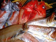 旬の魚介類