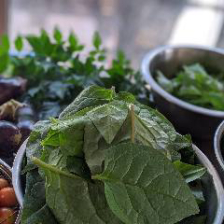 自家栽培の無農薬野菜