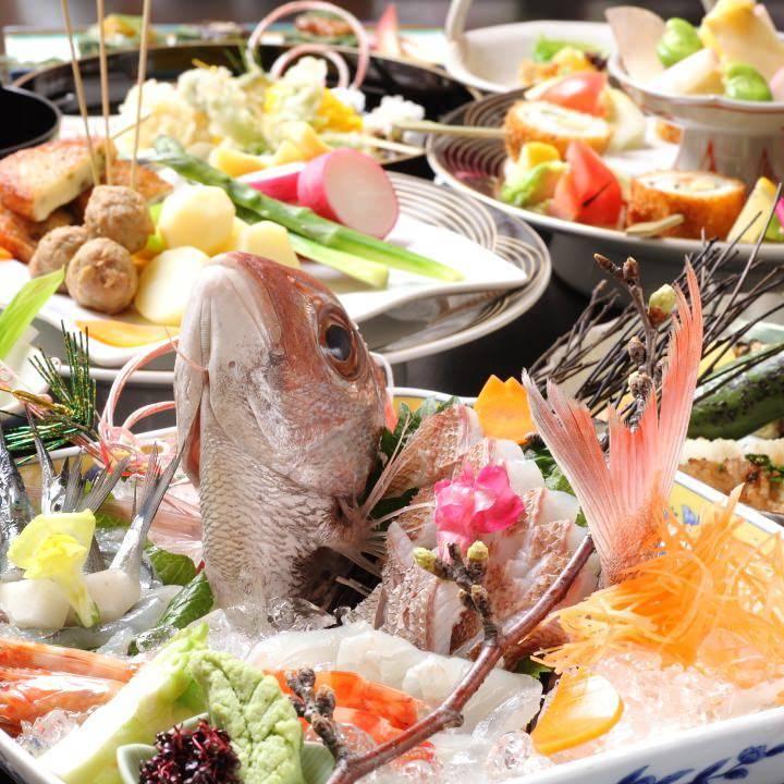 歓送迎で人気!明石鯛で祝鯛宴会!