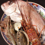 近海で取れる新鮮な魚介類をふんだんに使用しております!