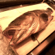 幻の高級魚として名高い「天然あら(くえ)」
