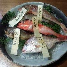 南知多豊浜漁港直送!新鮮な地魚!