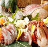 北陸直送 天然魚貝何が届くかはその日の海次第