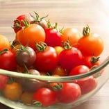 契約農家さんの美味しい無農薬トマト【岐阜県】